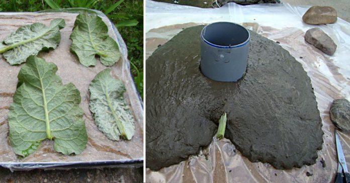 A rupt 4 frunze de brusture și apoi le-a acoperit cu ciment. Nimeni nu s-a așteptat la așa ceva…