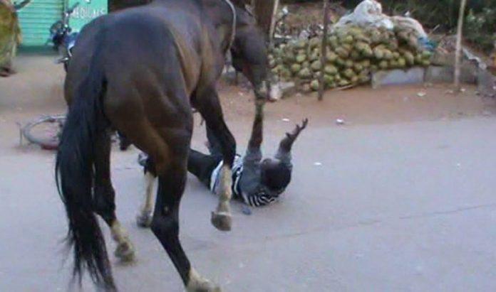 Un bărbat din Botoșani care își bătea calul a ajuns la Urgenţe, după ce animalul l-a călcat pur și simplu în picioare, provocându-i răni groaznice