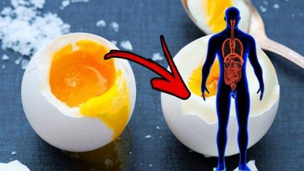 ESTE VIATA TA ! Ce se întâmplă daca mănânci oua zilnic. Iti va plăcea mai ales punctul 5