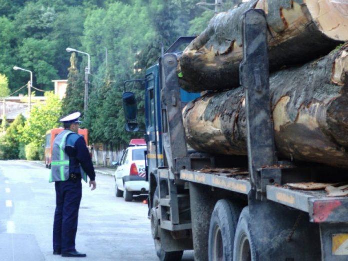 Un poliţist din Neamţ a refuzat o mită URIAŞĂ pentru un transport ilegal de lemne. Le-a luat și lemnul, și mașina și le-a dat o amendă să-l ţină minte toată viaţa