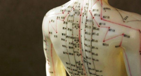 """""""Cine nu respectă si tulbură repetat ritmul interior, se îmbolnăvește mai des"""" – Orarul organelor, stabilit de vechii medici chinezi"""