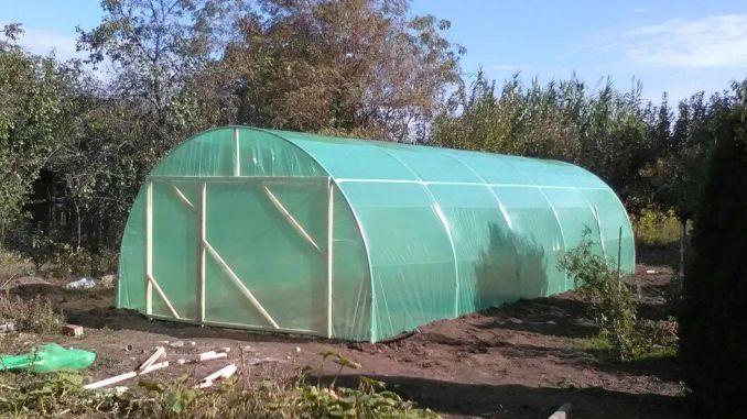 Solarul de legume care se montează în numai cinci ore! Costă 1.500 de lei și poate fi cumpărat în șase rate! Asta da idee de afacere! Cum este realizat și de unde îl poți cumpăra: