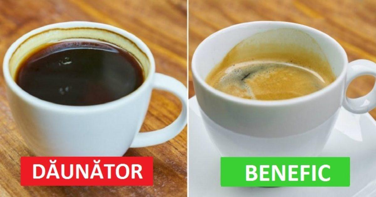 6 lucruri importante pe care trebuie să le cunoască fiecare amator de cafea:
