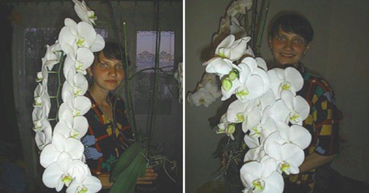 Orhideea ta va înflori puternic după ce vei face asta. Trebuie doar să schimbi…