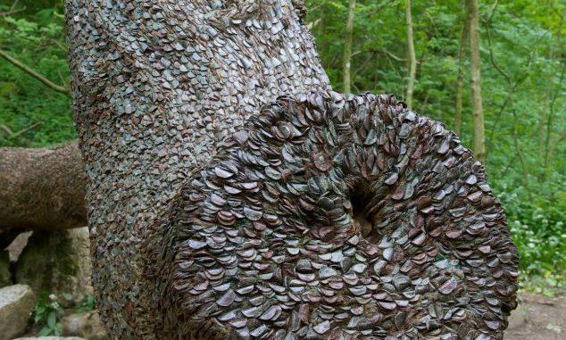 """A găsit în mijlocul padurii un pom ciudat, când a văzut ce crestea pe el a inlemnit: ,,Sunt peste tot și pot să îi dezlipesc și să îi folosesc!"""""""